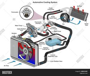 Automotive Cooling Image & Photo (Free Trial) | Bigstock
