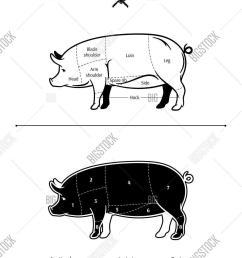 vector american us cuts of pork diagram  [ 1045 x 1620 Pixel ]