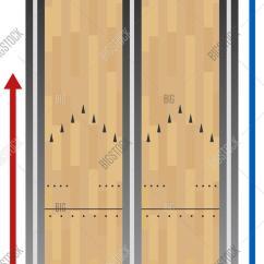 Bowling Lane Dimensions Diagram Anatomy Digestive Salivary Glands Chart Vector And Photo Bigstock
