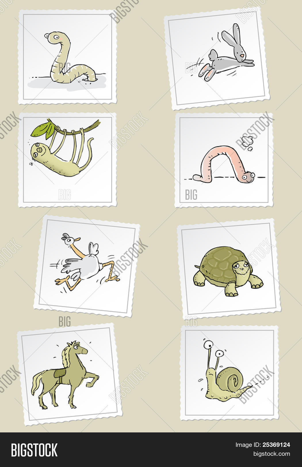 Fast Slow Funny Animals Vector Vector Amp Photo