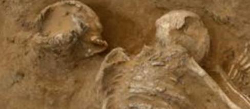 Individuo de la tumba número 11