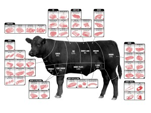 The Ultimate Guide To Beef Cuts  Business Insider