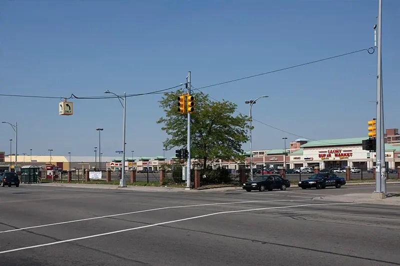 mall plant 1
