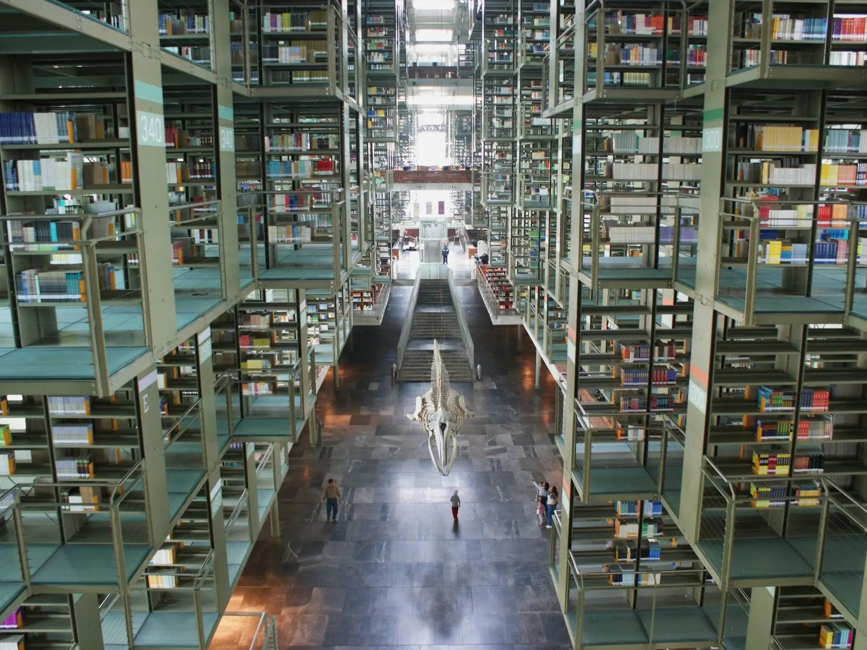 Along with the skeleton that hangs in the middle of the Pedro Vásquez Library in Mexico City, Mexico, the bookshelves in the library also appear to be hanging. The library is named after a Mexican philosopher and politician.