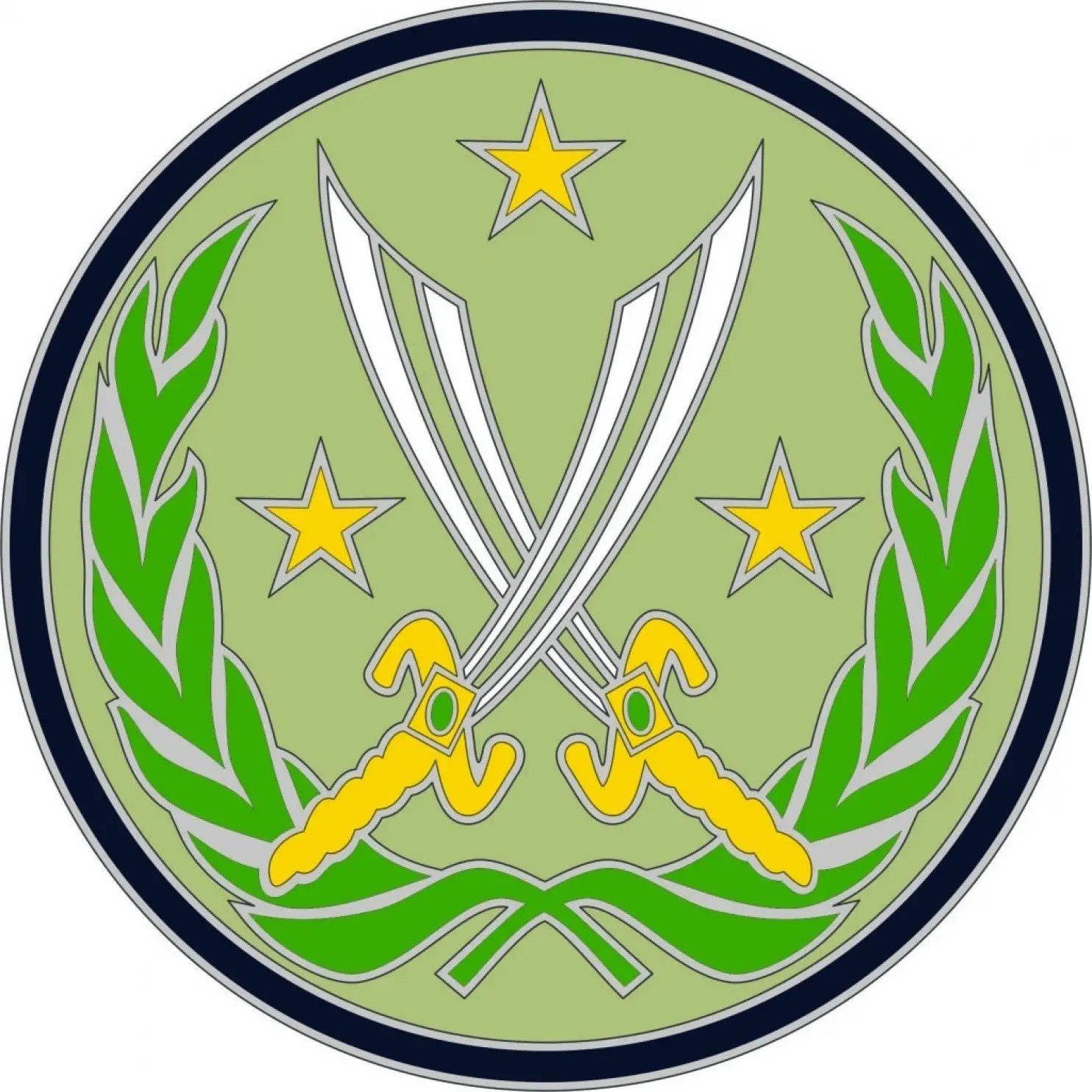 Operation Inherent Resolve combat patch.