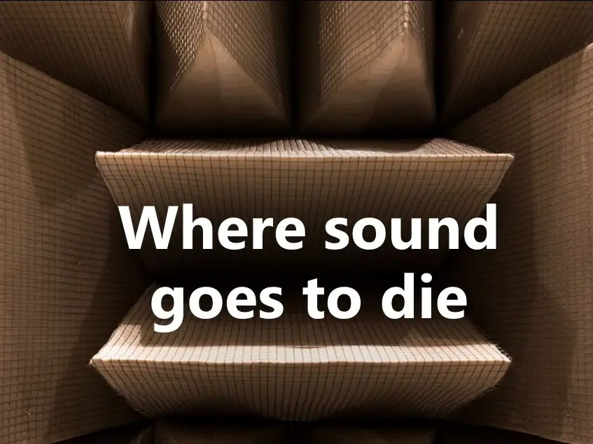 Microsoft quietest room in the world  Business Insider