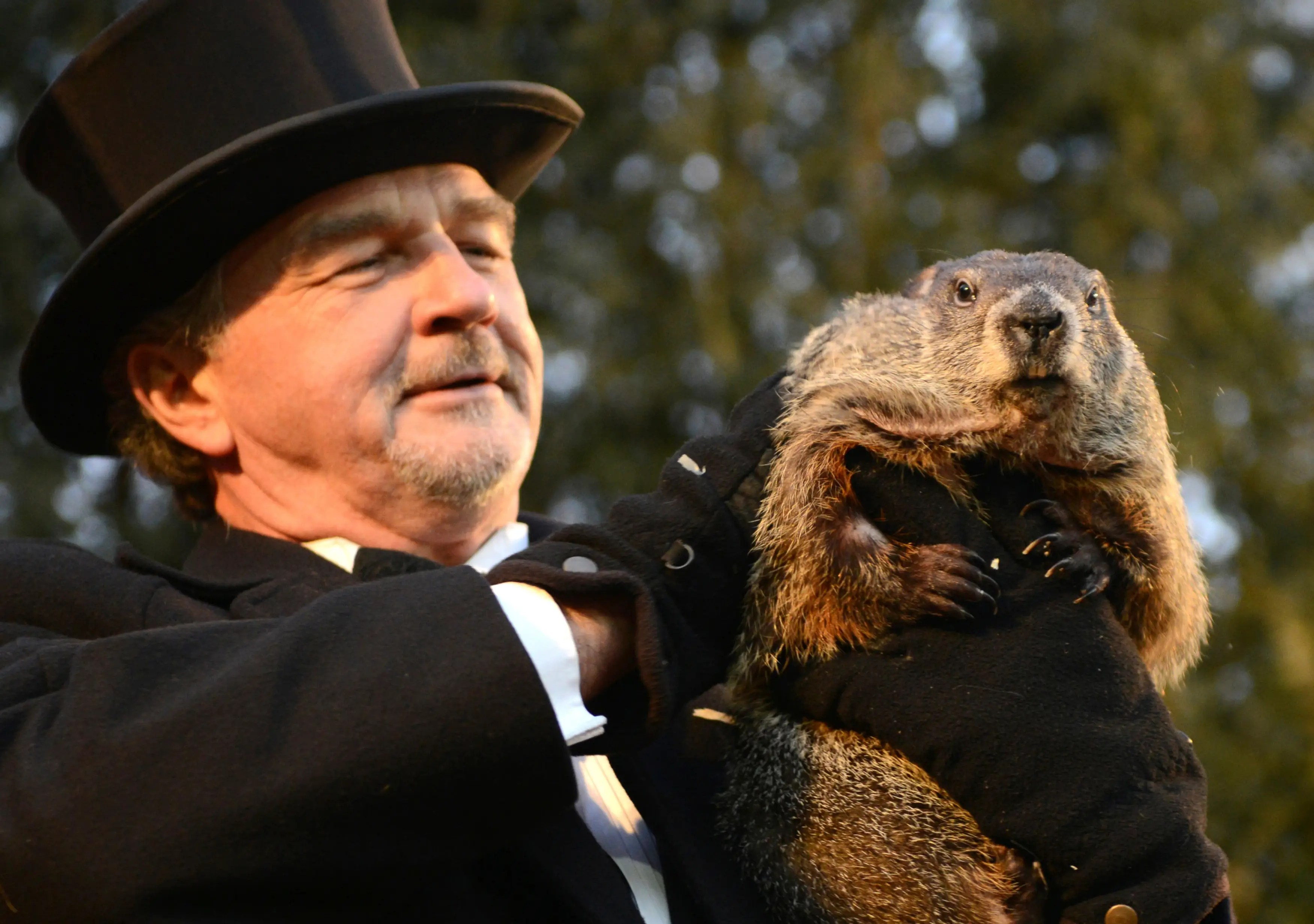 Groundhog Day The Real Spring Forecast According To A