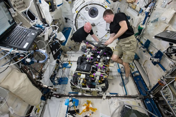 Scott Kelly Spent Time In Space - Business Insider
