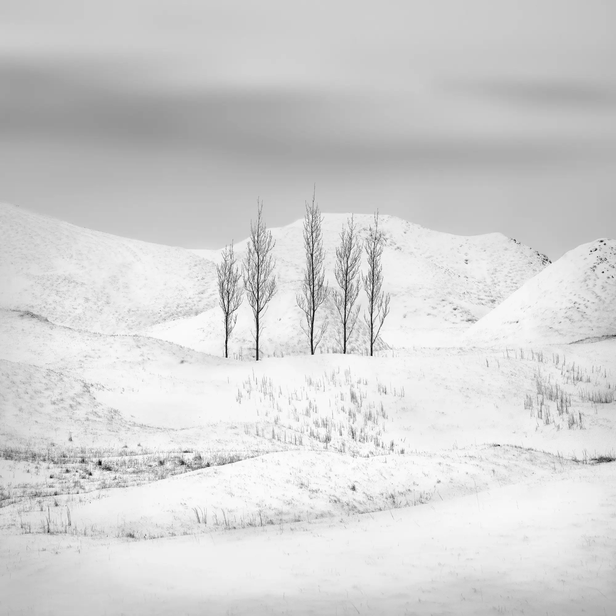 "Kath Salier came in second in the ""Photographer of the Year"" award for her work. Here we see a stark view of Iceland."