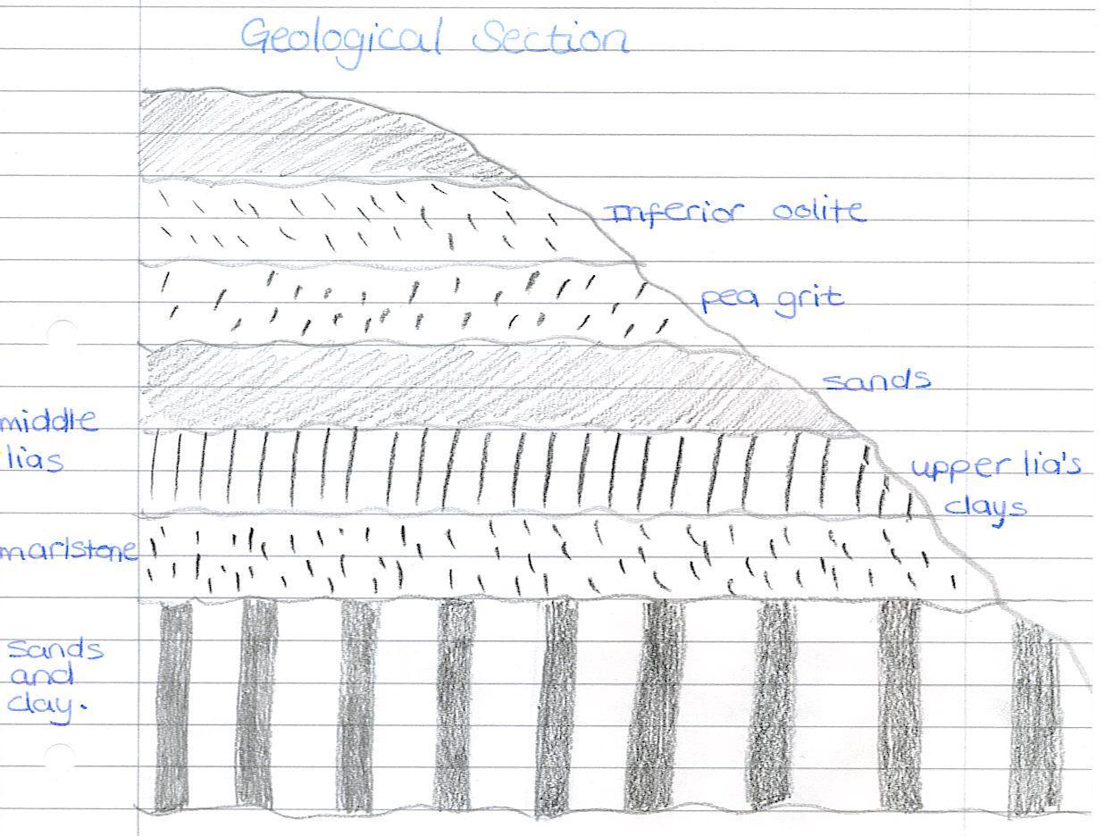 Loughton brook coursework