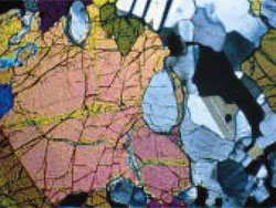 Polarized Observation of Peridotite (crossed polarizers)