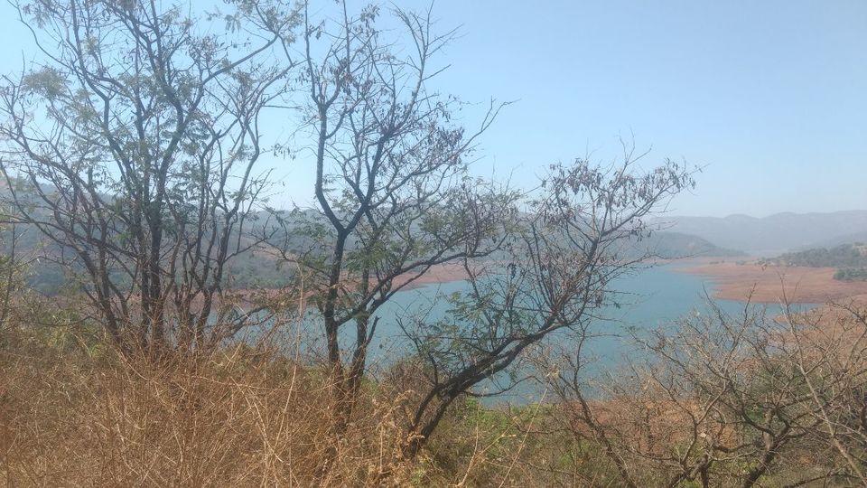 Photo of Eco village | Pune | Weekend gateway | Nature 15/22 by ghumakkad_bandi