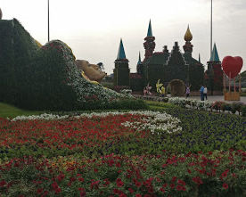 Photo of Dubai Miracle Garden - Dubai - United Arab Emirates by Sushma Neeraj