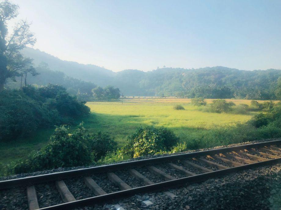 Photo of Paddy fields and railway track, Guwahati By Srikanth's Traveldiaries (Https://traveldiaries.vacations)