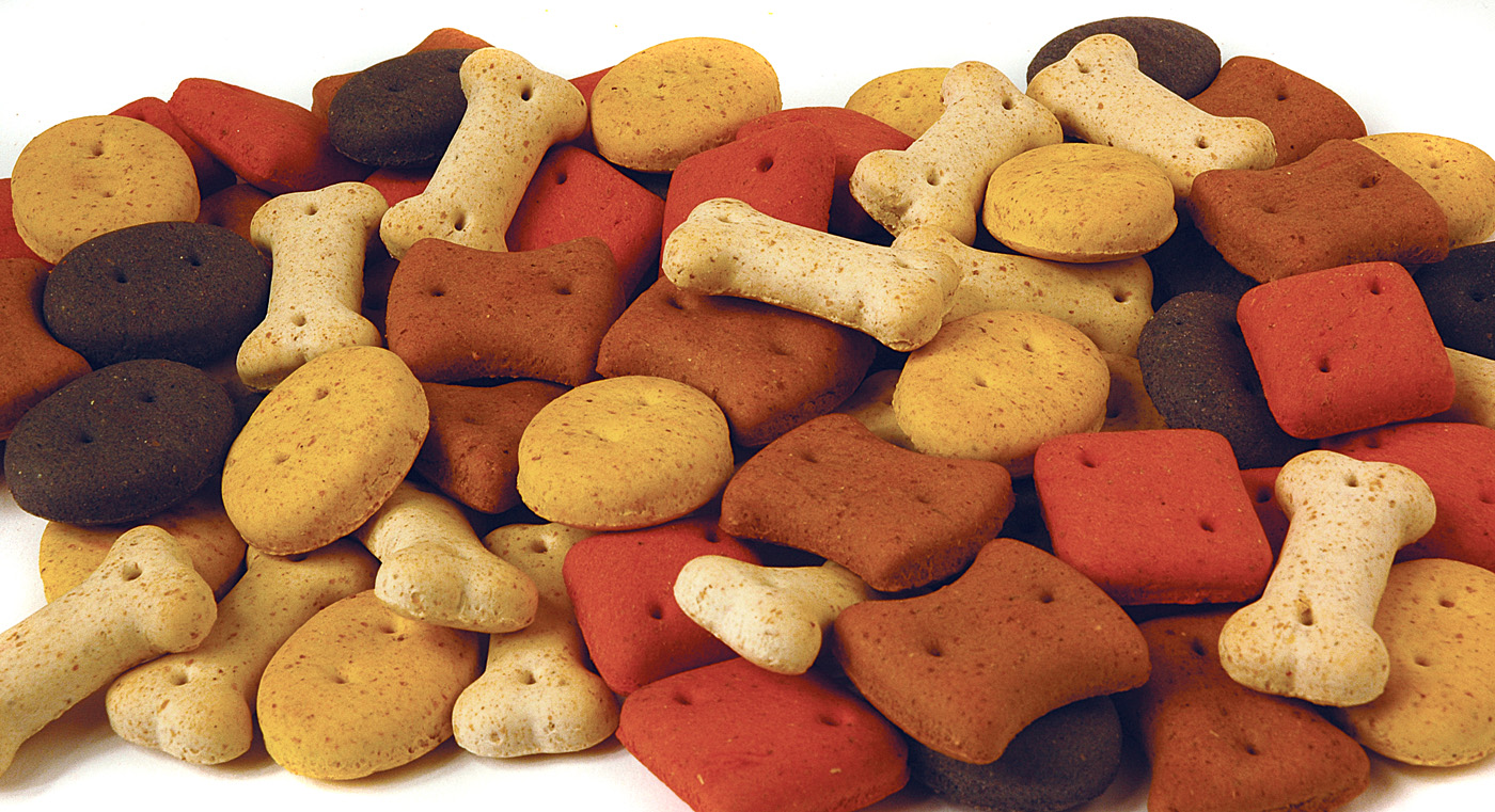 Pointer Biscuit Mixed  Dog Treats