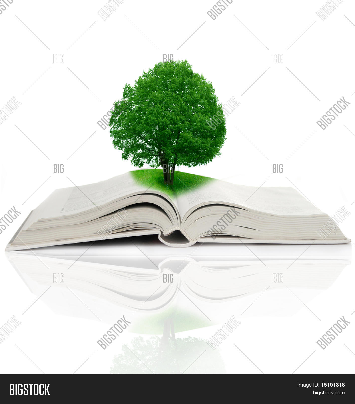 hight resolution of tree growing from a book