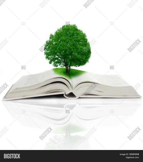 small resolution of tree growing from a book