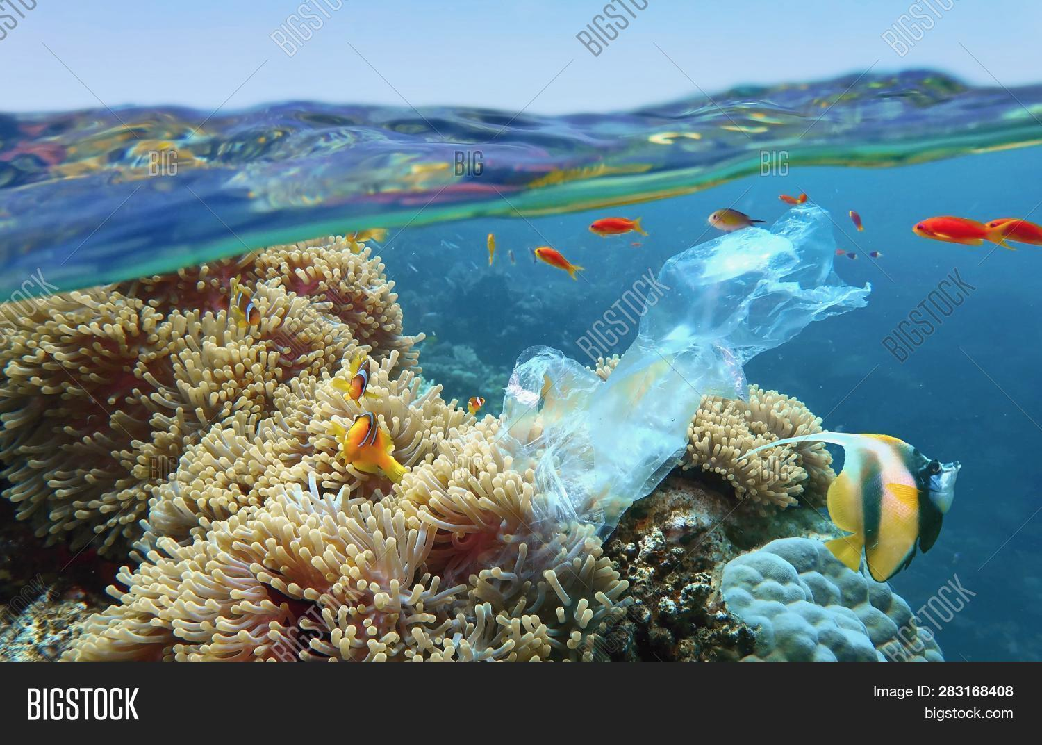 World Ocean Pollution Image Amp Photo Free Trial
