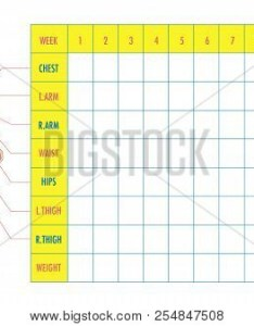 Body measurement tracking chart layout blank weight loss chest waist hips also vector  photo free trial bigstock rh bigstockphoto