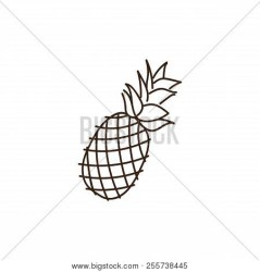 Pineapple Outline Vector & Photo Free Trial Bigstock