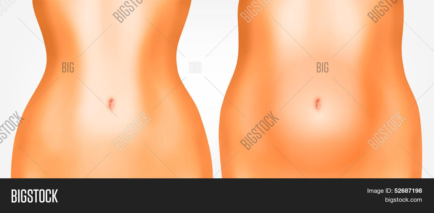 hight resolution of perfect woman belly from fat to thin diet or pregnant concept vector illustration