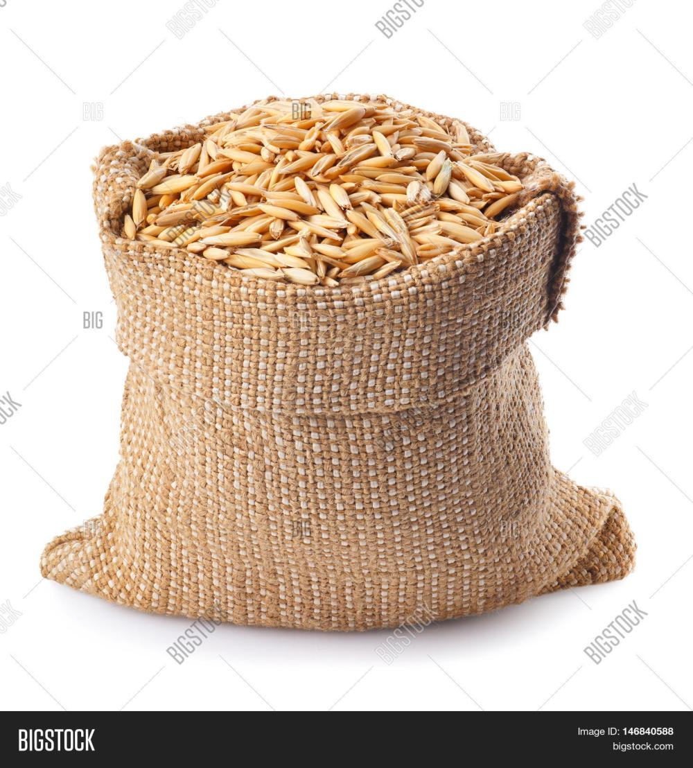medium resolution of grain oats with husk in burlap bag isolate on white background uncooked oat grains with