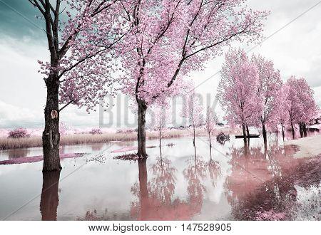 Imagens ilustra231245es e vetores de gr225tis Bigstock
