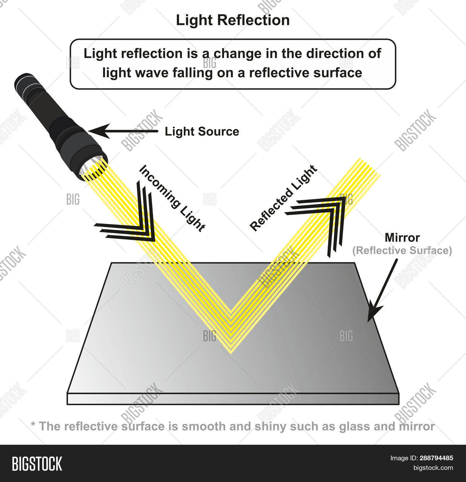 hight resolution of light reflection infographic diagram with example of light source where incoming rays reflected on a smooth