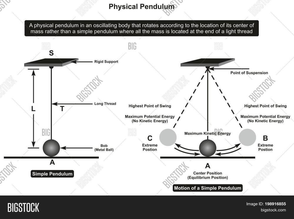 medium resolution of physical pendulum infographic diagram showing its parts and motion including rigid support thread bob point of