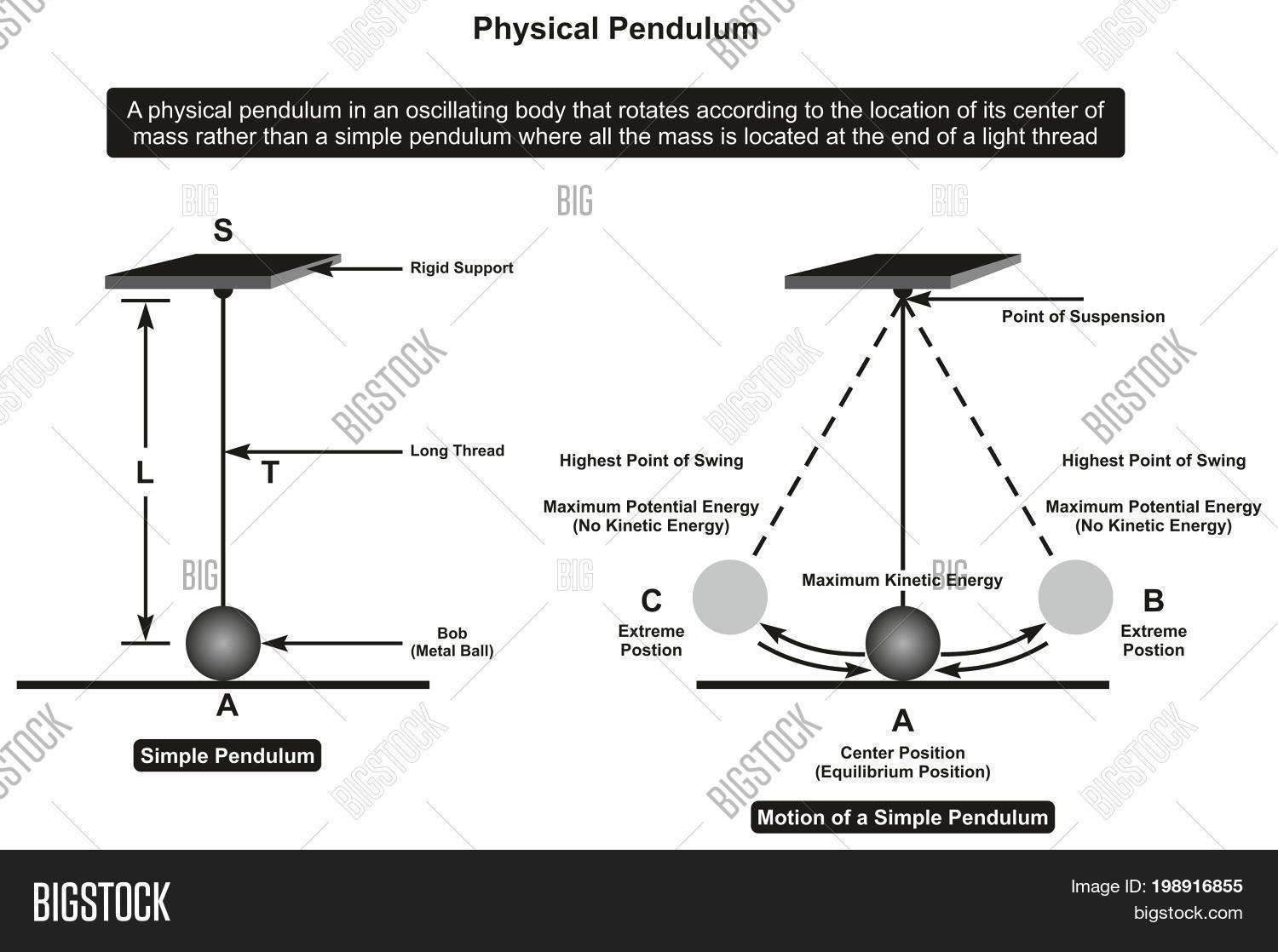 hight resolution of physical pendulum infographic diagram showing its parts and motion including rigid support thread bob point of