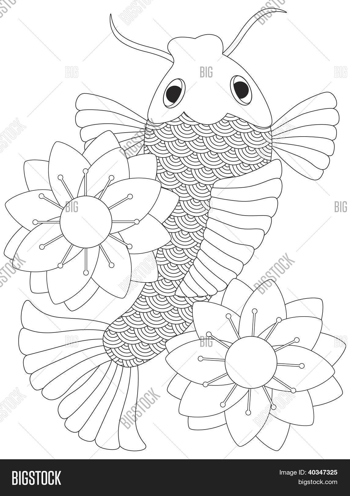 Japanese Chinese Koi Fish Line Art Vector Amp Photo