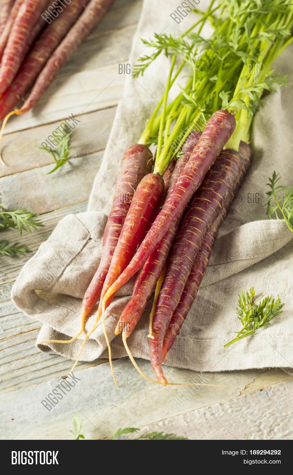 Raw Organic Heirloom Purple Carrots Image & Photo   Bigstock