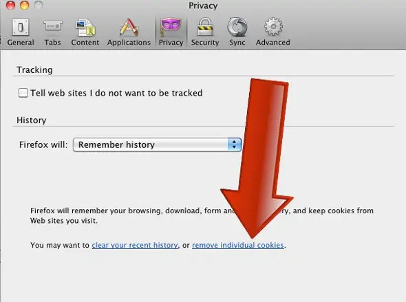 """Click on Privacy, then click on """"remove individual cookies."""""""