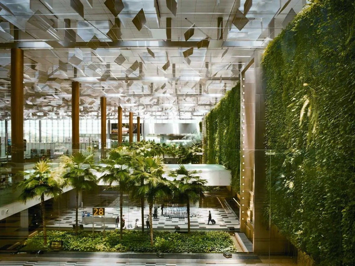 vertical garden and Green wall at Singapore airport