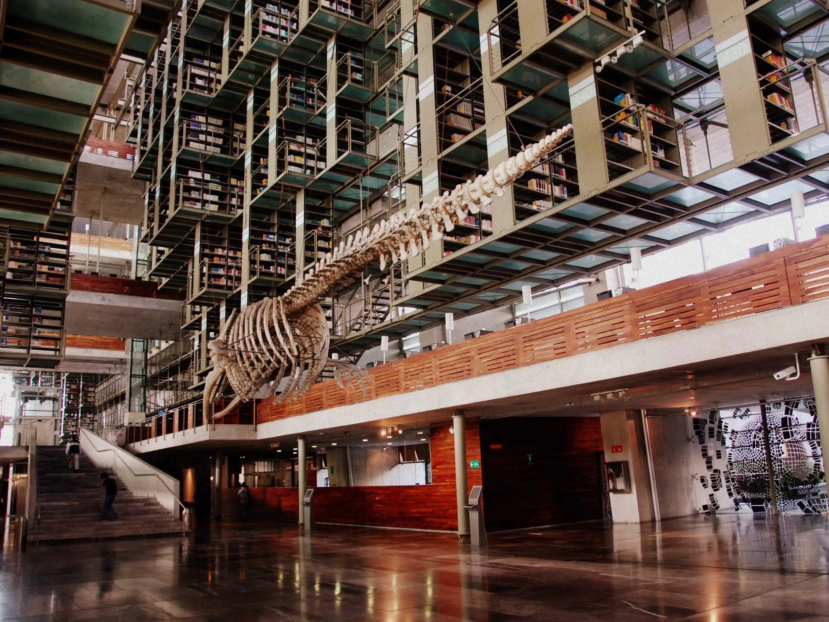 Best Libraries From Around The World - Vasconcelos Library