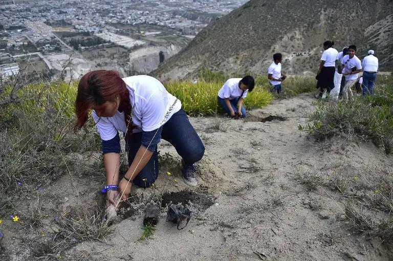 Volunteers participate in a reforestation campaign in Catequilla, Ecuador on May 16, 2015