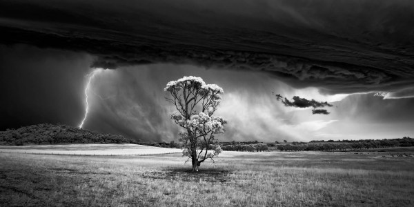 Award-Winning Landscape Photographer