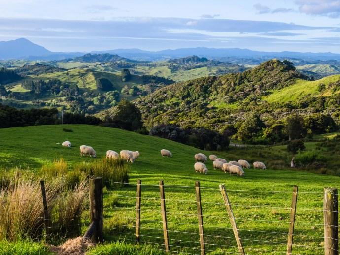 melhores lugares para viajar no mundo - nova zelândia