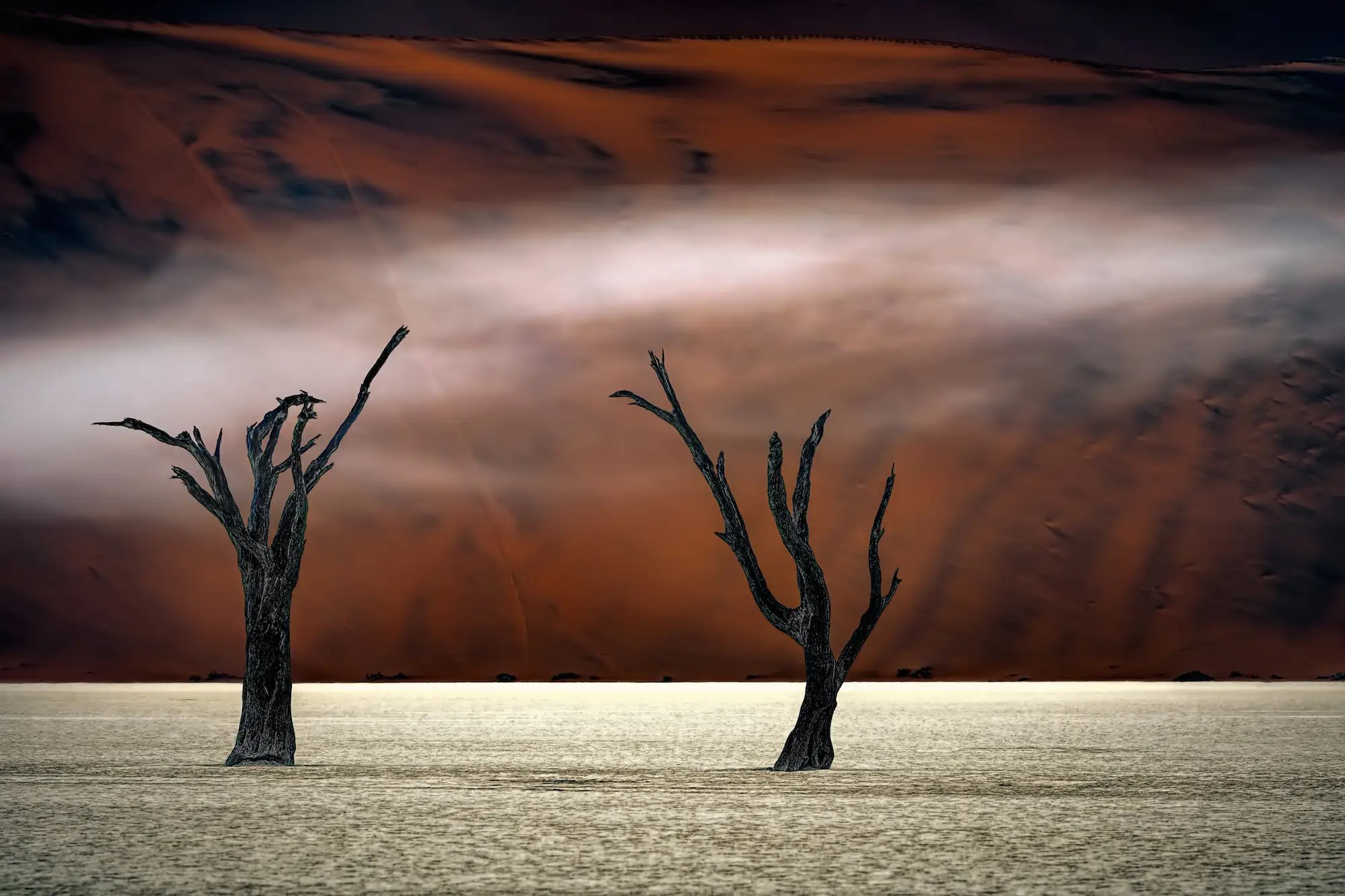 """There's something haunting in Poppe's shot from Deadvlei, Sossusvlei, Namibia. A third image from the third-place winner of the """"Photographer of the Year"""" contest."""