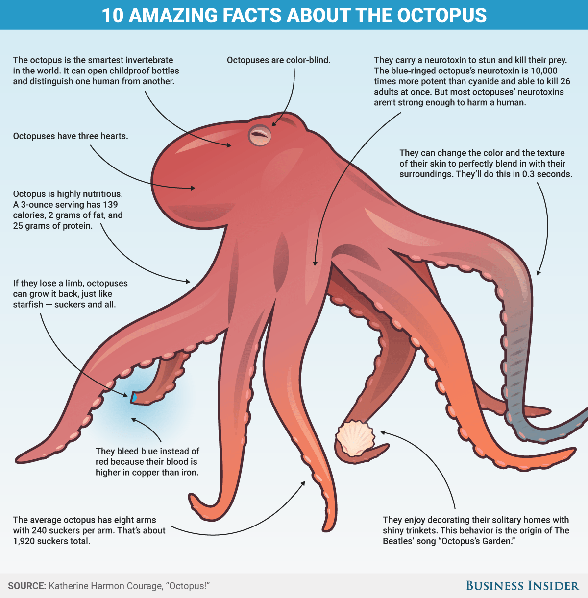 labeled diagram of octopus l5 30p to l14 30r wiring 10 reason the is incredible business insider