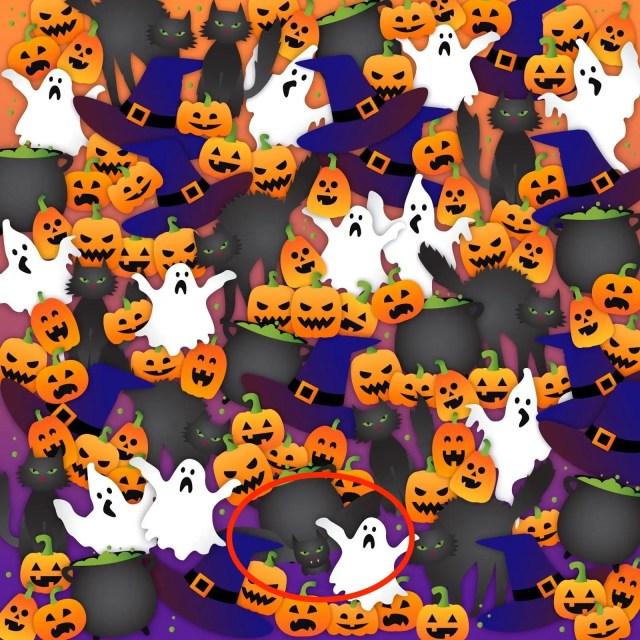 pumpkin brainteaser skitch
