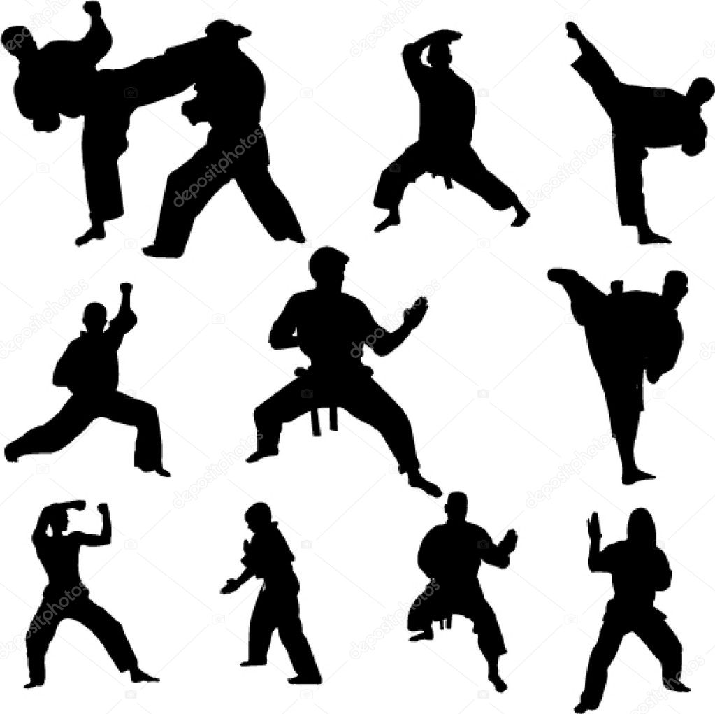 Karate — Stock Vector © bojanovic #2316047