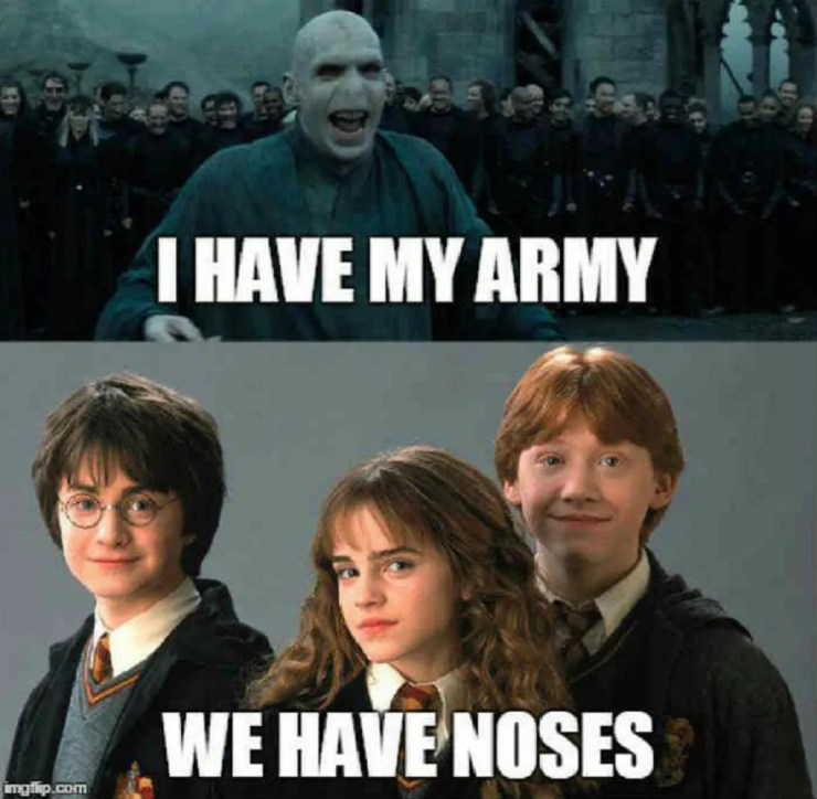 Harry Potter: 10 Hilarious Golden Trio Memes Only True Fans Will ...