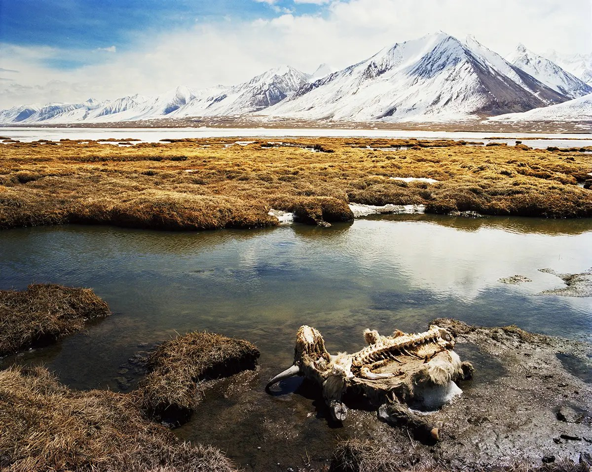 The war has not reached the Wakhan Corridor since the Soviets left 30 years ago. The Wakhi and Kyrgyz fear that when NATO leaves in 2014, the Taliban may try to move in.