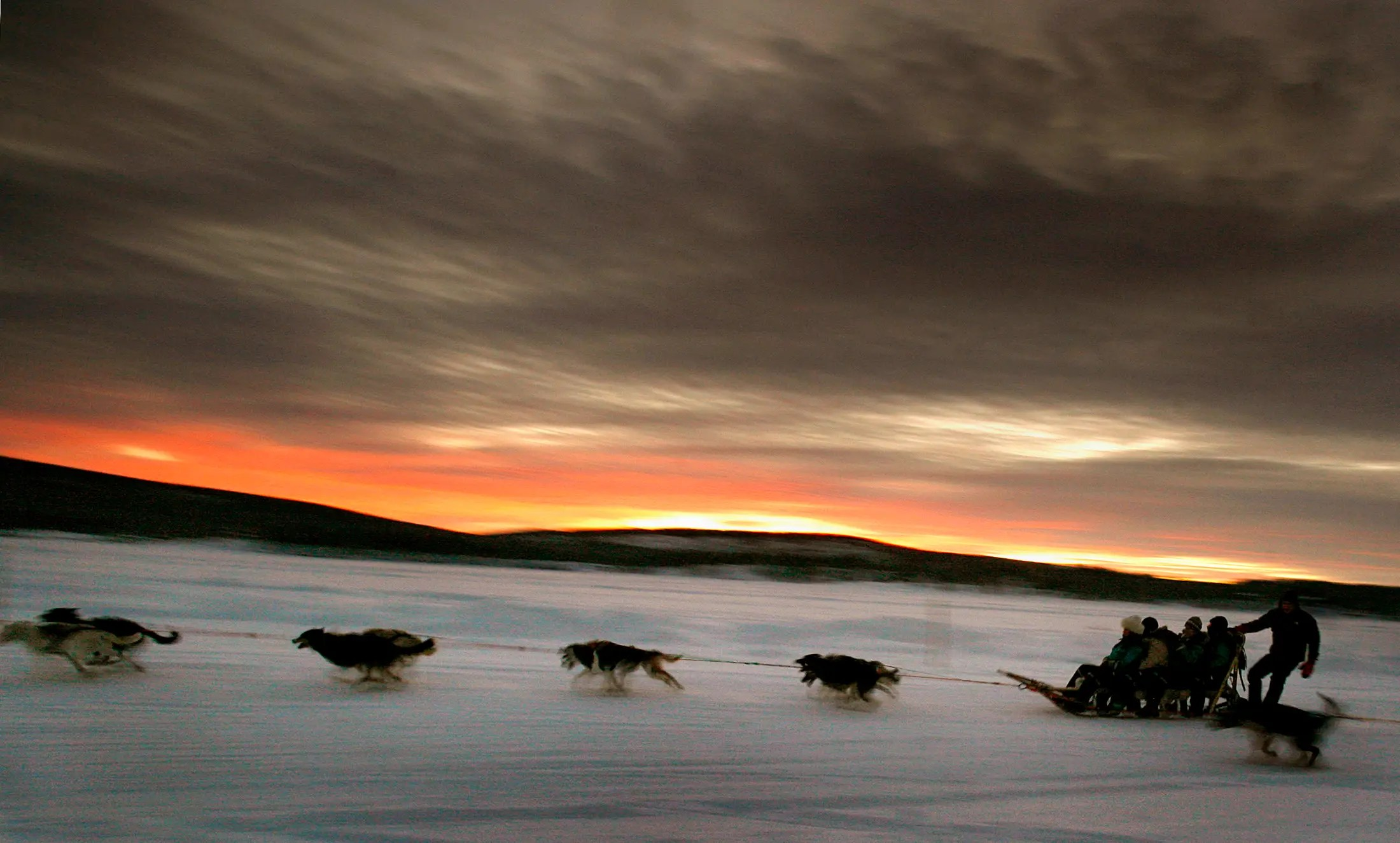 A dogsled team carries tourists down the frozen Torne River, located above the Arctic Circle in northern Sweden.