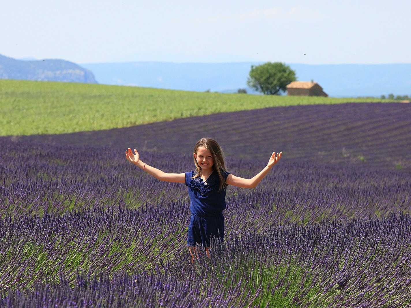 Stroll through fragrant lavender fields in Provence, France.