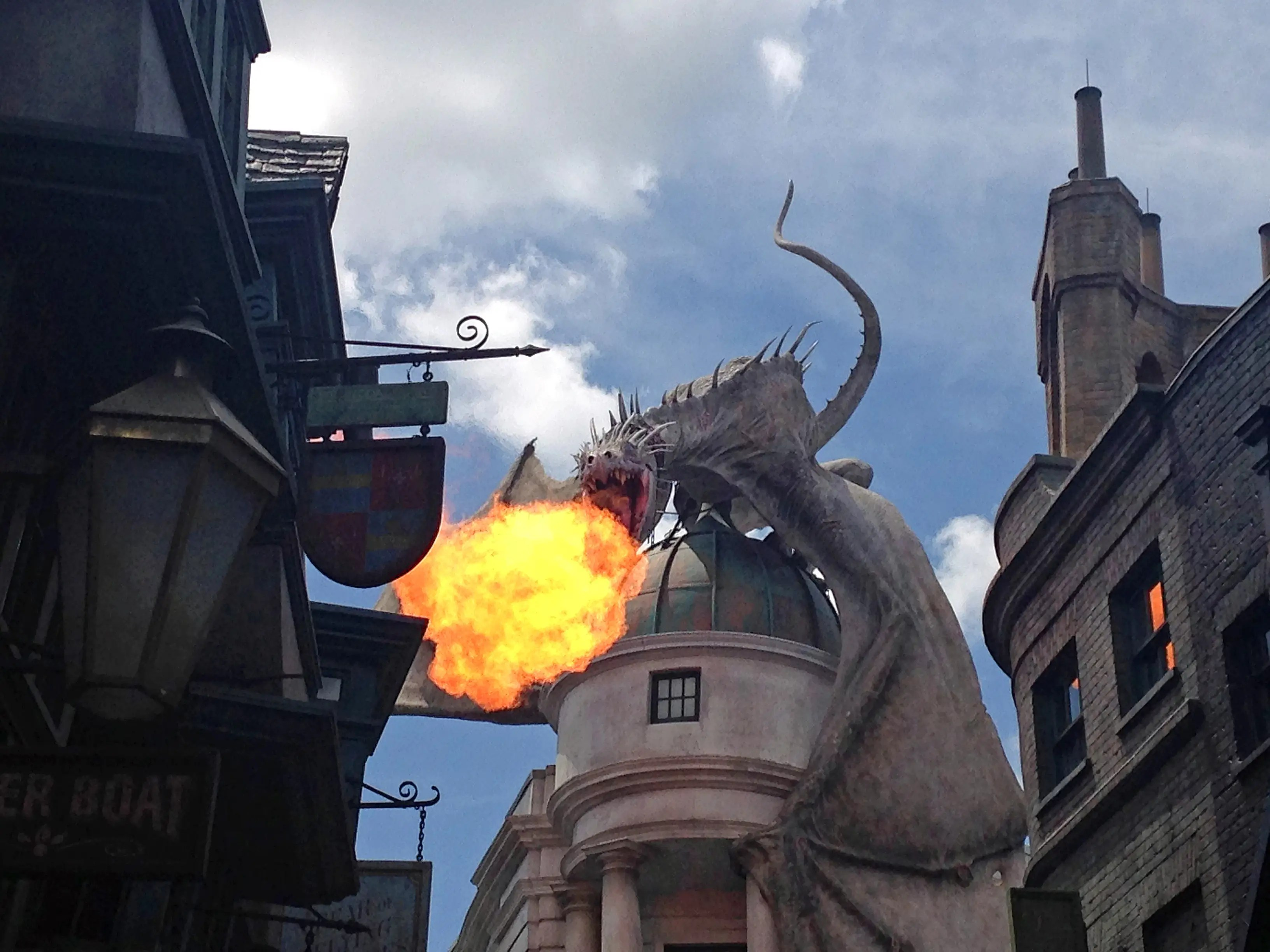 Image result for harry potter world, dragon