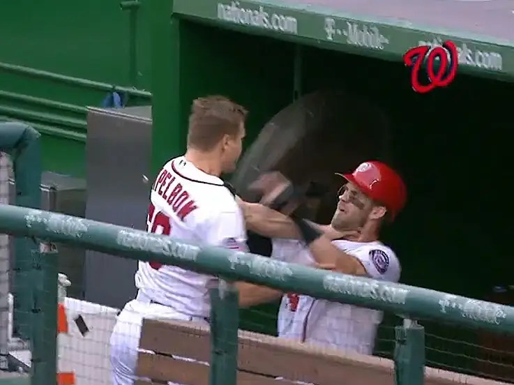 Image result for jonathan papelbon bryce harper fight