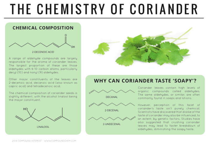 Leaves from the coriander plant are a popular ingredient in Indian cuisine. But the leaves can sometimes taste soapy. That's because they contain similar aldehyde compounds found in many soaps and lotions.