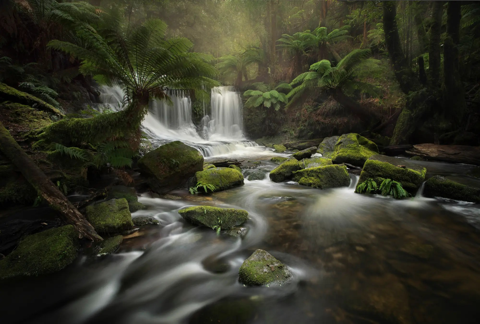Here in a third photo from the second-place body of work, she captures the constant motion of water at Mt. Field National Park in Tasmania, Australia.